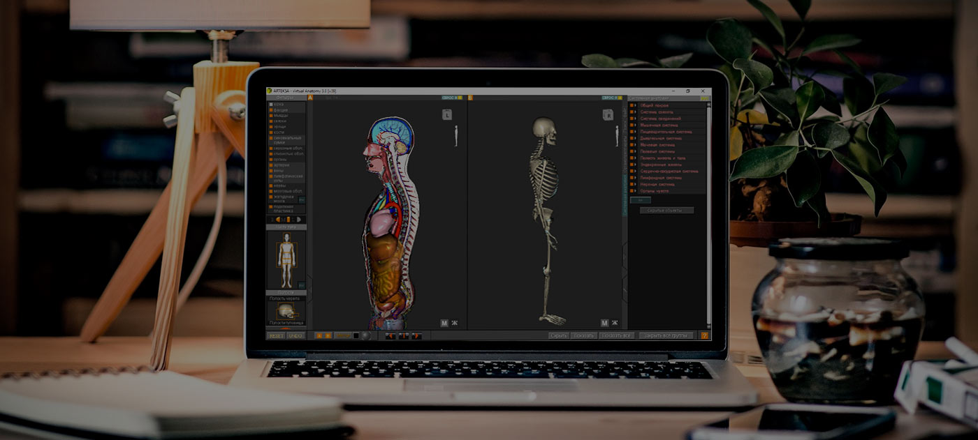Virtual anatomy 4.0